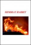 Shmirat Habrit Pamphlet