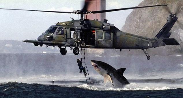 dangerous-shark-attack2.jpg