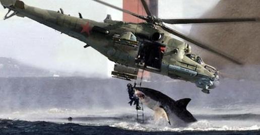 dangerous-shark-attack3.jpg