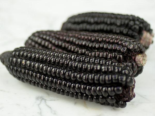corn-kulli-peruvian-black-dsc00863.jpg