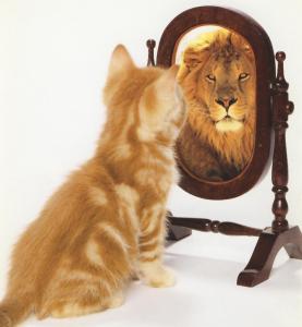lioninamirror.png
