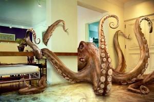 octopus_by_leovilela-300x200.jpg